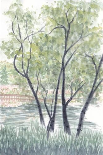 Cantigny Trees 2 copy