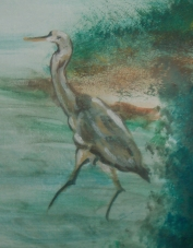 Heron Striding copy