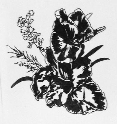 jess sharpie plant copy