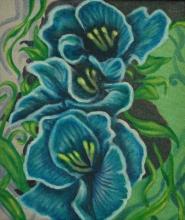 A Riot of Blue Gladiolus