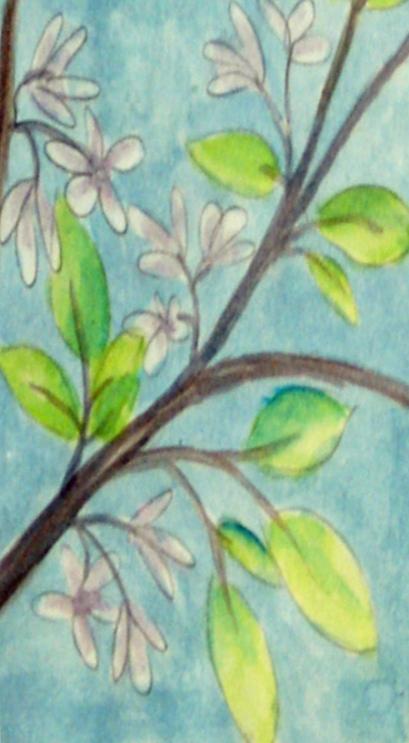 Blossoms copy