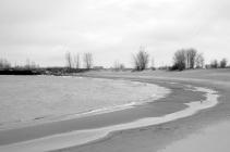 gray shoreline