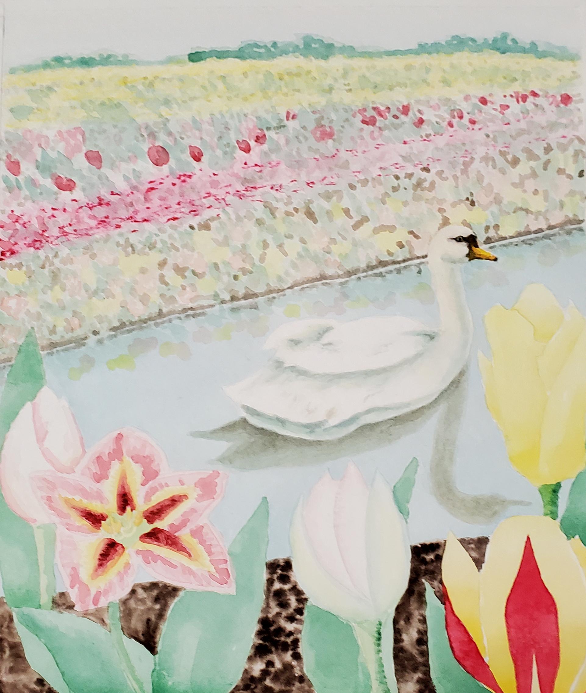 Tulip Fields & Swan on the Keukenhof Canal
